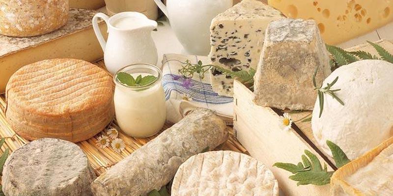 Béja : Un festival dédié au fromage, cheesy days à ne pas rater !