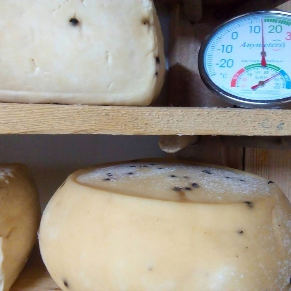 fromage-011220-4.jpg