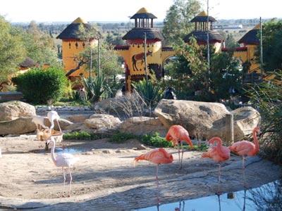 Friguia Park plus beau que nature !