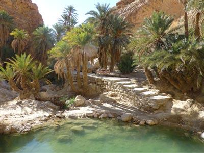 Le Tourisme à Gabès reprend des couleurs au mois de décembre