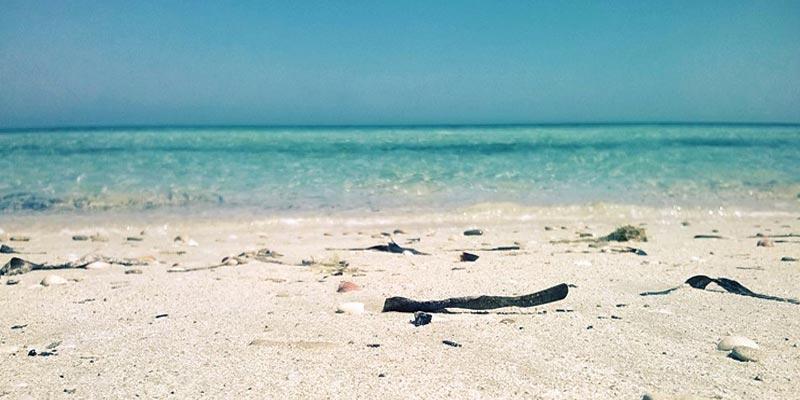 El Ghedhabna cette plage sauvage, deviendra la plus grande station balnéaire