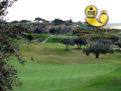Flamingo Golf Course à Monastir, un parcours de golf exceptionnel dans un champ d'oliviers