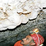 Découverte d'une nouvelle grotte au Djebel Zaghouan