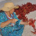 La 2ème Edition de la Fête de la Harissa et du piment du 7 au 9 octobre