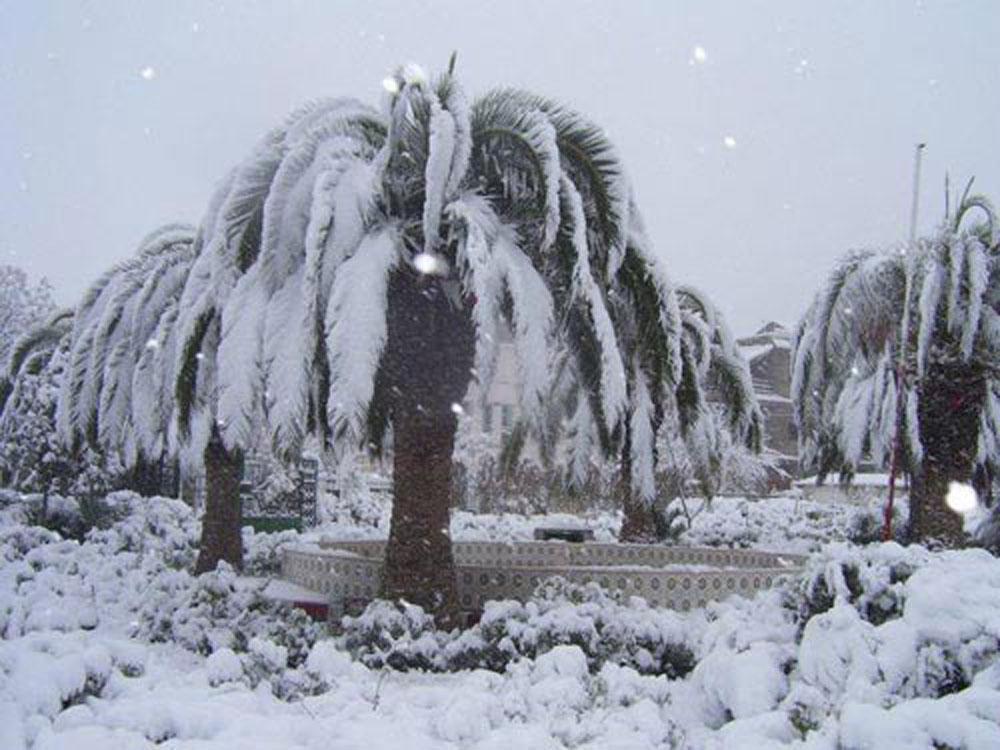 hiver-011220-4.jpg
