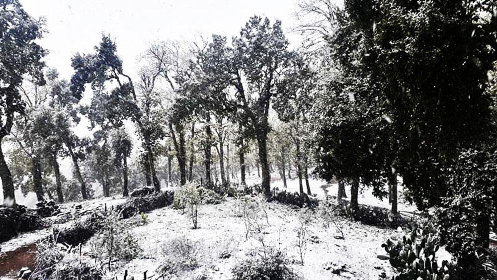 hiver-011220-7.jpg