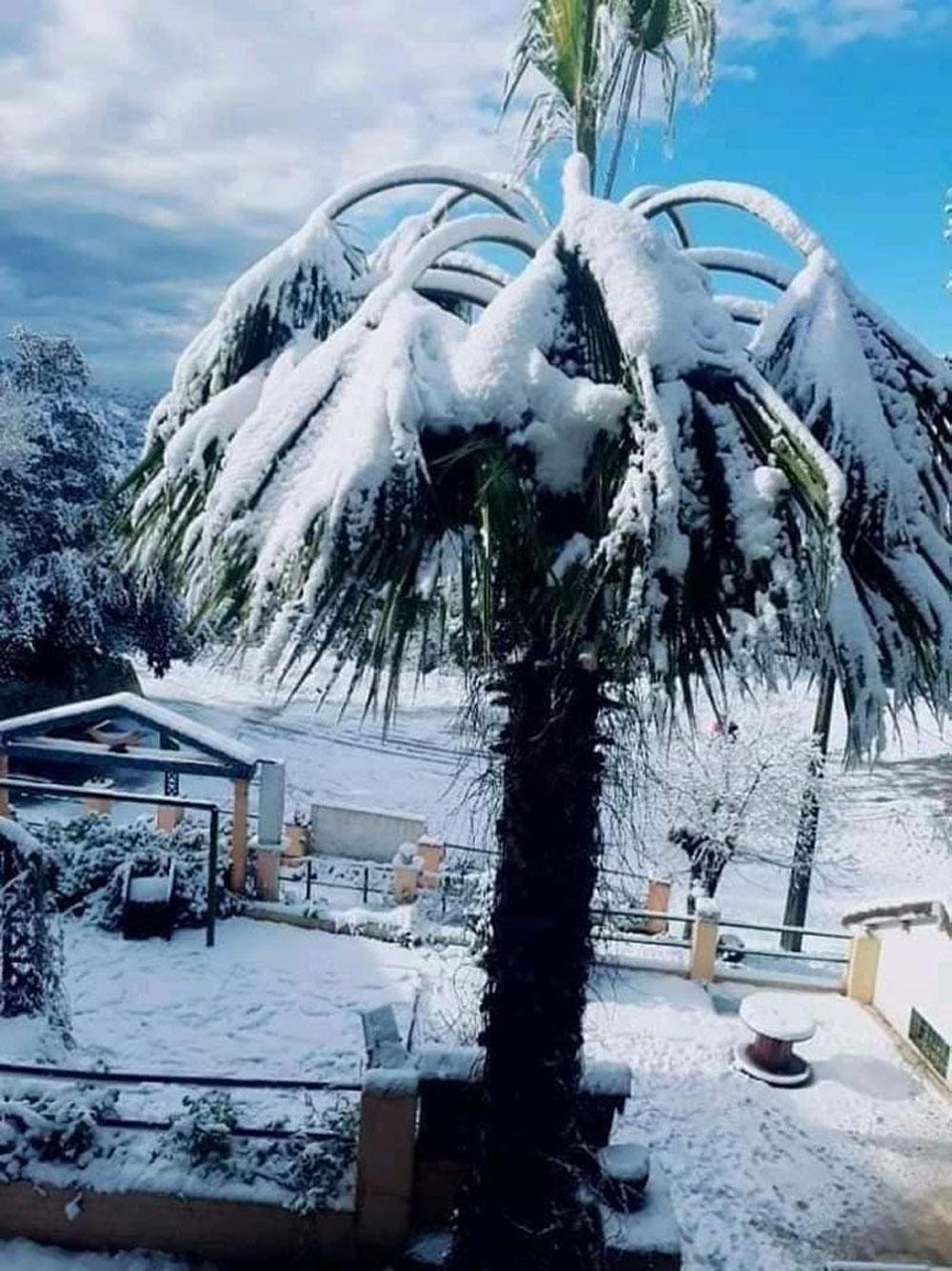 hiver-011220-8.jpg