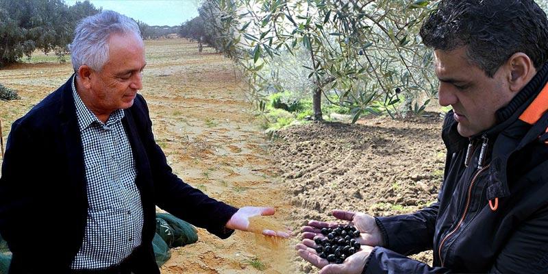 Olive Oil Times à la rencontre de Raouf Ellouze et Karim Fitouri, ces leaders des oléiculteurs tunisiens