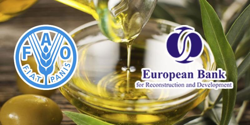 La BERD et la FAO soutiennent l'huile d'olive tunisienne