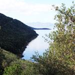 En photos : le Parc National d´Ichkeul, la beauté de la nature à l´état brut