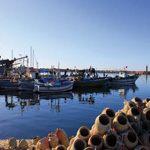 Djerba, île de rêve et joyau de la Tunisie