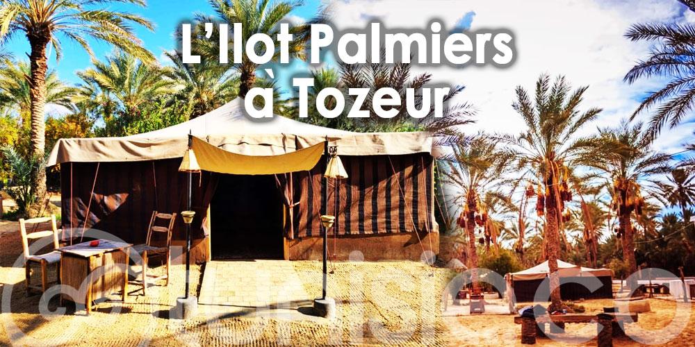 Dites Bonjour à l'Ilot Palmiers, 1er campement éco-responsable à Tozeur
