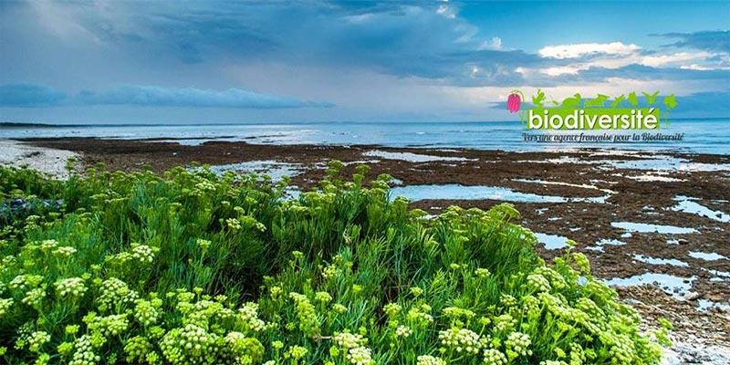 La journée internationale de la biodiversité le 20 mai à la Cité des Science de Tunis