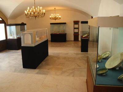 بالصور : اختتام أشغال مشروع 'تهيئة متحف رقادة الأثري' بالقيروان