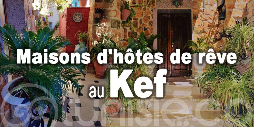 Maisons d'hôtes de rêve à découvrir au Kef