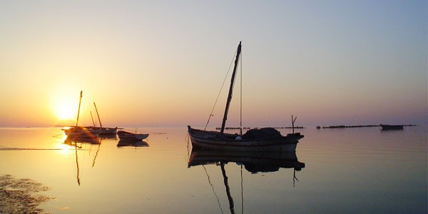 Les îles de Kerkennah : Une beauté à couper le souffle