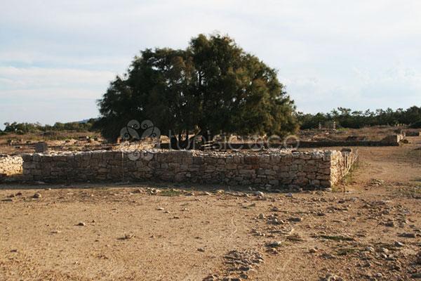 En photos : Découvrez le site archéologique de Kerkouane