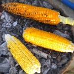 La Ktaniya : Maïs grillé pour les grands et les petits
