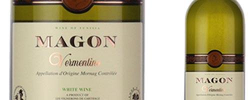 Magon, Vieux Magon...mais qui est Magon?