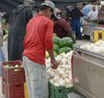 Marchés hebdomadaires en Tunisie