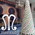 Masmoudi lance sa page Facebook et son site web pour la France