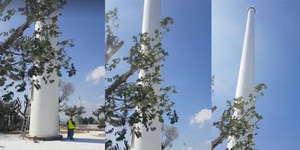 Pourquoi le mât fixe du drapeau géant a coûté 300 mille dinars?