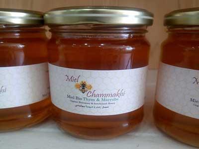 Dégustation de miel biologique de romarin