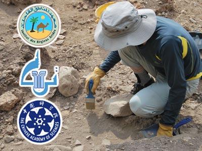 Découverte de 10 nouveaux sites archéologiques dans le sud tunisien