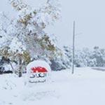 En photos : Admirez la beauté de la Tunisie sous la neige