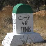 Dialecte en Tunisie : Chiffres