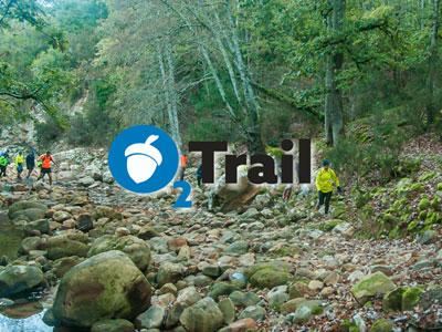 Oxygène Trail, une course inédite et un village artisanal et sportif à Ain Draham