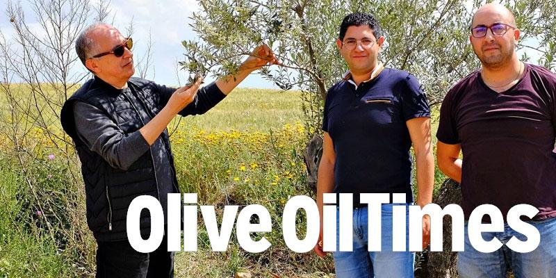 oil-260718-1.jpg