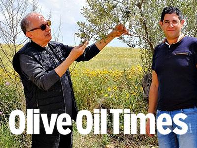 Les producteurs tunisiens voient une promesse dans le tourisme de l'huile d'olive