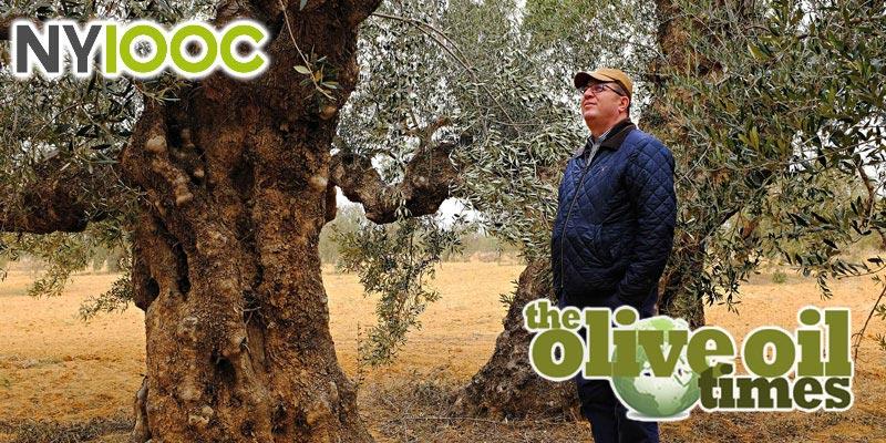 Olive Oil Times rencontre les lauréats tunisiens du Concours mondial d'huile d'olive NYIOOC