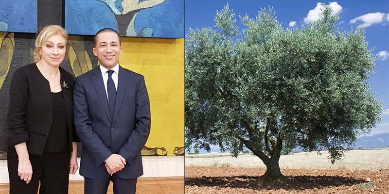 Journée de l'olivier décrétée par l'UNESCO grâce à la Tunisie et le Liban