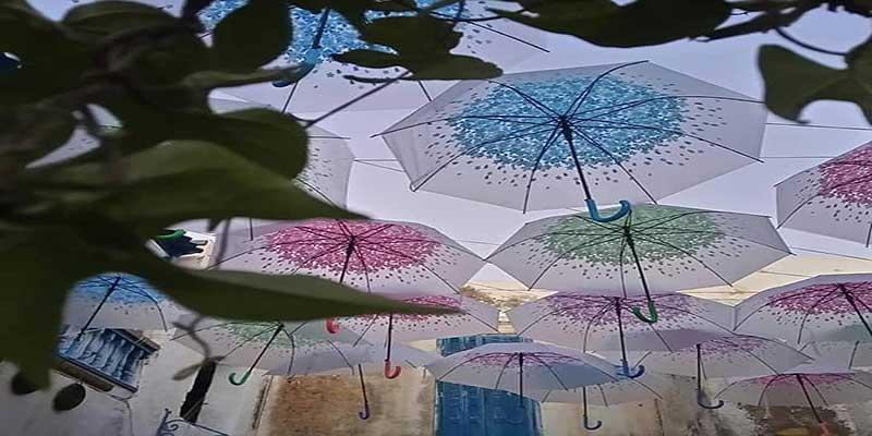 parapluies-061118-1.jpg