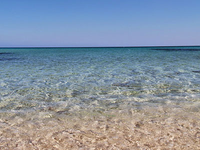 la plage de Menzel Temim Nabeul : Une Beauté Prodigieuse