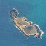 Visite de l'île Plane le 5 juin