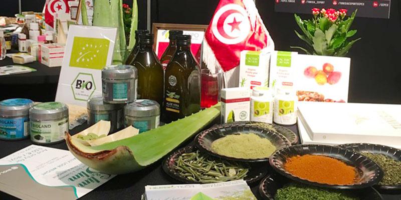 Les extraits de plantes naturelles de Tunisie à La Haye