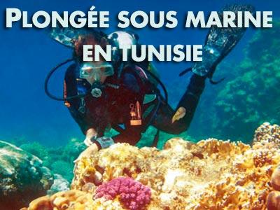 Passionnés de plongée sous-marine : Ces 5 adresses en Tunisie sont pour vous !