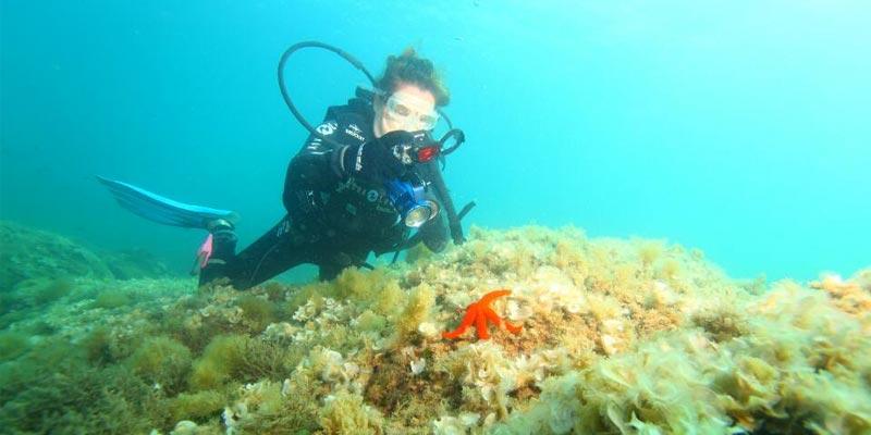 Pour cet été, une nouvelle école de plongée sous-marine ouvrira ses portes à Gammarth