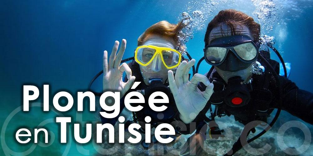 Plongée en Tunisie : Découvrez les meilleurs centres de plongée !