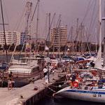 Marina / Port de plaisance Bizerte