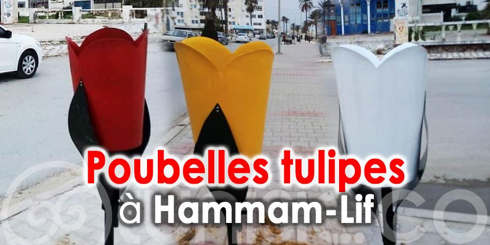 Des Tulipes pour embellir vos déchets à Hammam-Lif
