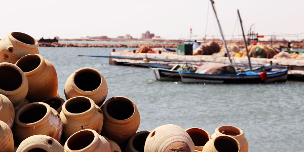 Démarrage de la saison de la pêche au poulpe à Kerkennah