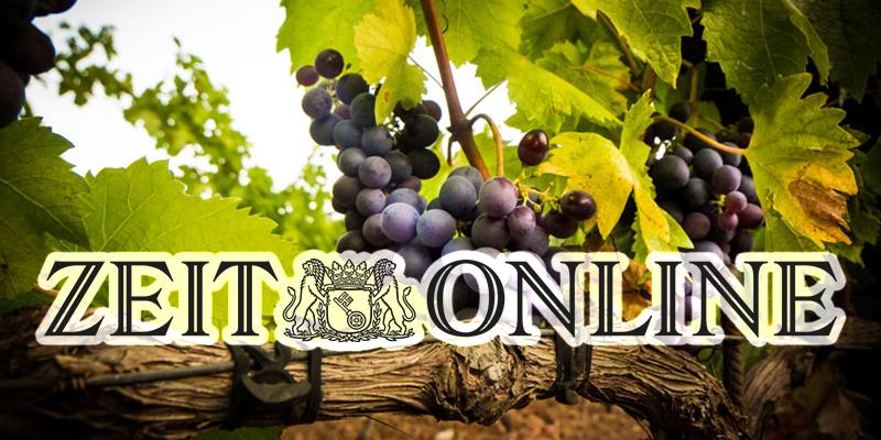 Zeit retrace la route des vins de Neferis, levier du tourisme en Tunisie