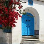 Une après-midi détente à Sidi Bou Said: Visites-Café-Dîner