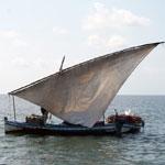Sortie en Mer à Kerkennah avec Chokri