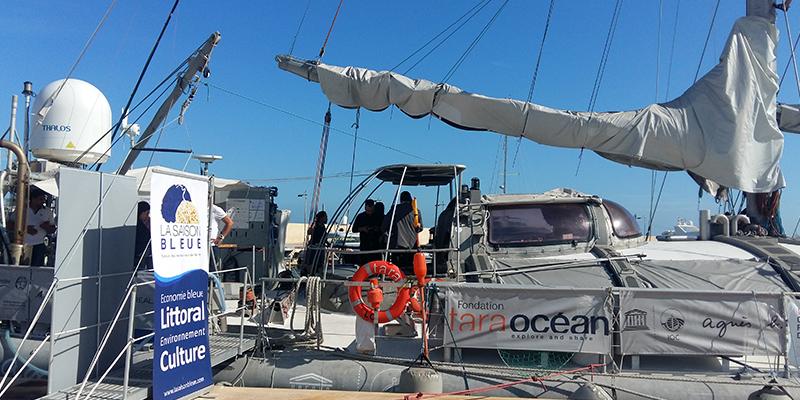 Scientifiques et société civile mobilisés contre la pollution plastique en Méditerranée