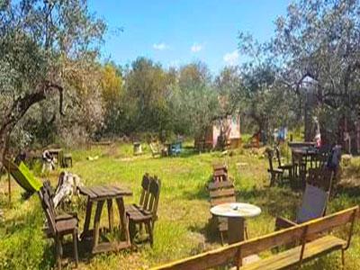 Un dimanche à la ferme Tarenti, découverte, dégustation et détente